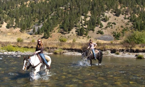 2 Hour Horseback Ride in Big Sky, Montana