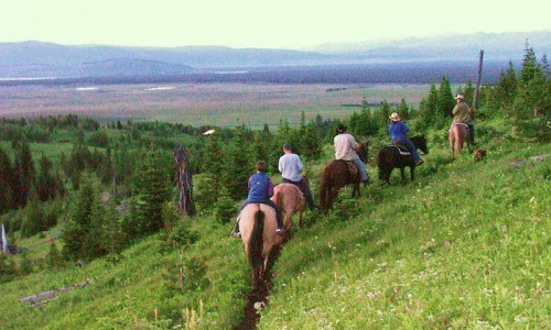 2 Hour Evening Horseback Ride in West Yellowstone, Montana