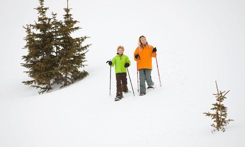 4 Hour Snowshoe Tour