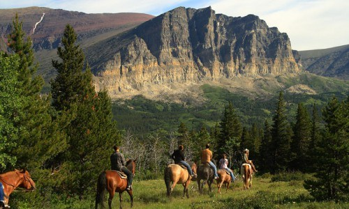 Half Day Horseback Trail Ride in the Flathead National Forest in Montana