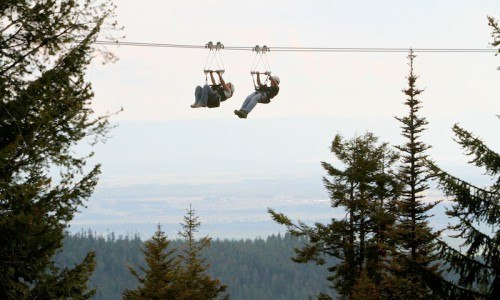 Whitefish Mountain Zipline Tour